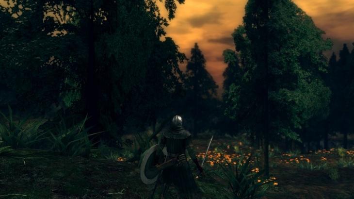 dark-souls-royal-wood